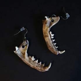 Kolczyki żuchwa