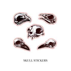 Winylowe naklejki czaszki